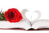 Les nouvelles citations sur l'amour