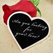 Les poèmes l'amour