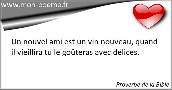 Quelque chose de nouveau assez Proverbes Bible : 50 proverbes de la Bible &LV_11