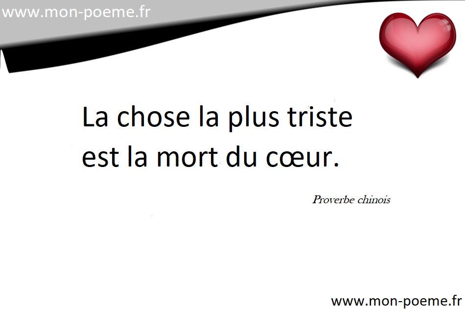 Extrêmement Proverbes chinois traduits en français. LM47